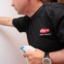 Allpro Cleaning Service